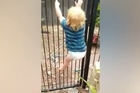 Source: Wendy Atkinson.   His mum timed it: Just 21 seconds.  That was all it took for Wendy Atkinson's 2-year-old toddler Brodie to scale the pool fence at their family home, undo the latch and, grinning wildly, swing into the pool area on the open gate.