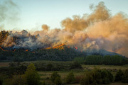 A fierce fire on the Coromandel Peninsula is continuing to burn out of control, claiming properties on a sustainable farming community. Photo: lenzcapephoto / Facebook