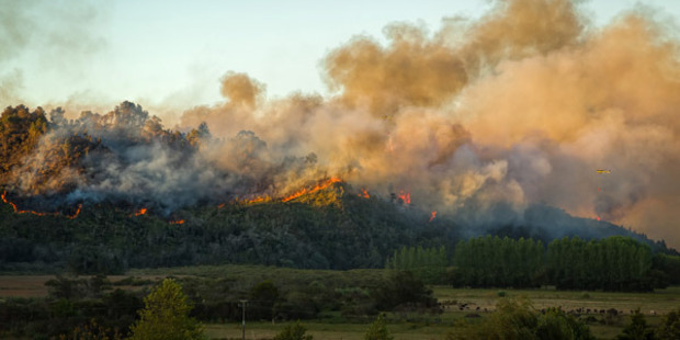 Loading A fierce fire on the Coromandel Peninsula is continuing to burn out of control, claiming properties on a sustainable farming community. Photo: lenzcapephoto / Facebook