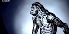 Watch: Archive: Evolution from ape-man to neanderthal