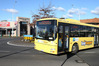 There may be delays on some Bayhopper bus routes between 9am and midday today. File photo
