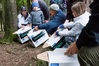 Locals help release the endemic Toutouwai (North Island robin) and miromiro (North Island tomtit) at Maraetotara Plateau. Photo File