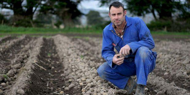 Opiki potato farmer, Mike Moleta. Photo / File