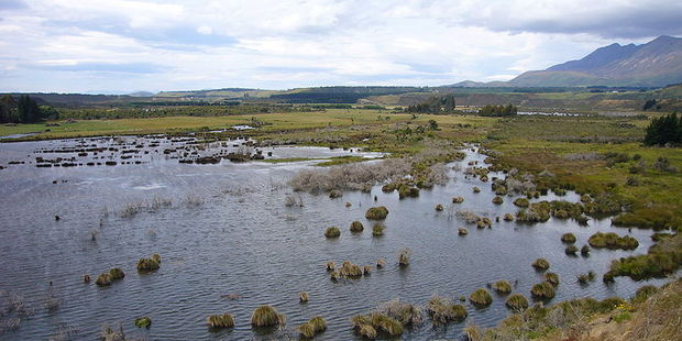Rob Kempthorne says wetlands on farm are a cost-effective way to help the environment. Photo / File