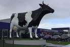 Farmers congregated under the Morrinsville Mega Cow to protest. Photo / Supplied