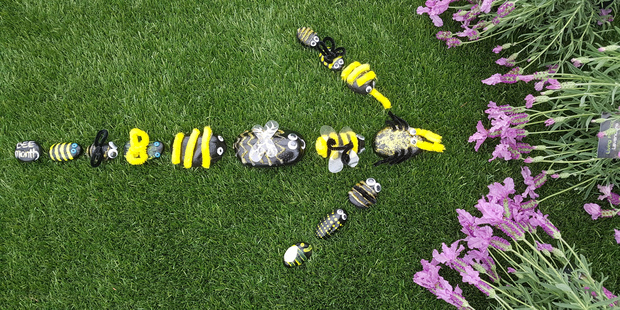 At least 140 rocks decorated as bees will be hidden at the Rotorua Tree Trust for children to find. Photo/Shauni James