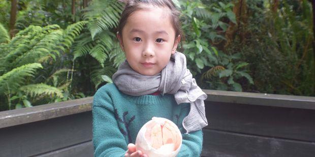 EMPTY EGG: Muzi Fang (4) takes a close look at the kiwi chick's egg.