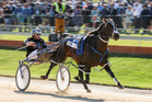 Mark Purdon driving Lazarus wins the New Zealand Trotting Cup. Photo / Getty Images