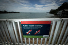 Signs warn people against swimming at Coxs Bay because of overflows from central Auckland's ageing combined stormwater/sewer pipes. Photo / Dean Purcell
