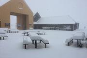 A freak summer fall of snow on Cardrona ski field. Photo / Supplied via Matt McIvor, Cardrona Alpine Resort