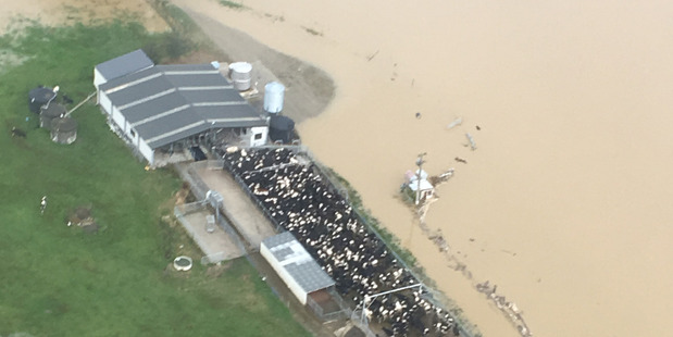 Flooding around the Southland town of Waikaia. Photo / Mike Thom/High Country Helicopters