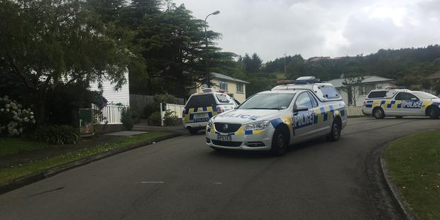 Police cars at the scene in Tawa. Photo / Frances Cook