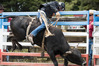 A rodeo in action. Photo / Jason Oxenham