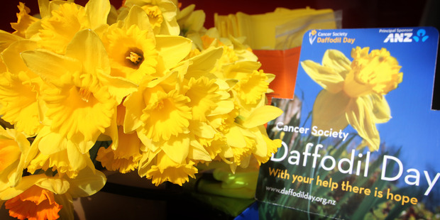 Daffodil Day is a big fundraiser for the Cancer Society. Photo / File