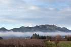 Legend has it that Te Mata Peak's contour is the prostrate body of the chief Rongokako. Photo File