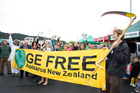 A celebration in 2011 after Whangarei District Council adopted its policy opposing the outdoor use of genetically-engineered crops and animals.