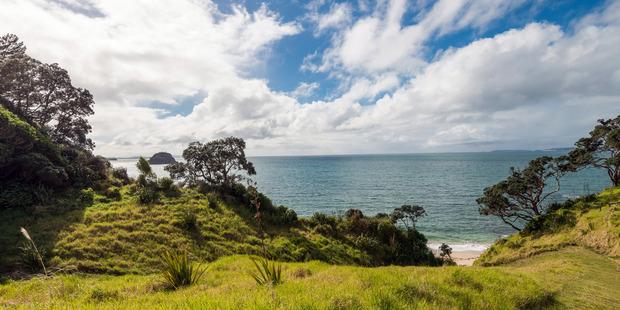 The sprawling property provides sea views and numerous mature Pohukatawa. Photo / Bayleys Real Estate.