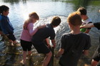 Children from an anglers group took part in the release of 700 trout into Lake Mclaren and the Ruahihi Canal. Photo/ Supplied