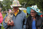 Visitors Merv and Diane Joblin travelled from Te Puke with chihuahua Katie, who didn't like her hat.