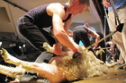 Angus Moore, who won the 125th anniversary Nelson A and P Show's Open shearing final on Saturday, pictured in the 2012 New Zealand Shears Circuit final in Te Kuiti. Photo/Doug Laing SSNZ
