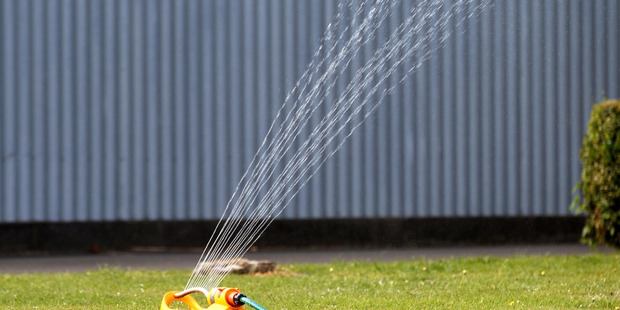 Sprinklers are being restricted across the Waikato following a spell of fine, hot weather. Photo / Duncan Brown
