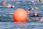 DETERMINED: Swimmers at Pandora Pond during the annual Ironmaori Half yesterday morning. Photo/Paul Taylor
