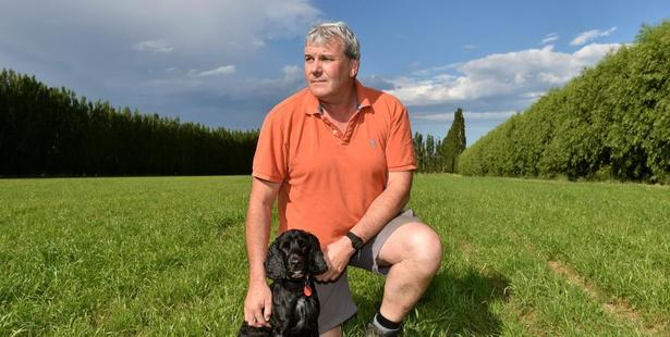 Former blackcurrant grower Chris Nelson and pet dog Brodee in one of his grassy new paddocks. Photo: Gregor Richardson