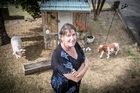 Dianne Green. Dianne's fake animals have are missing from her front garden.