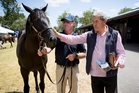 Former Racing Minister Winston Peters inspects the filly by Savabeel who fetched $750,000. Photo / Dean Purcell