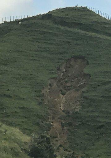Slipping on paddocks on Pukehoi Rd in Eketahuna caused by the unrelenting rain.