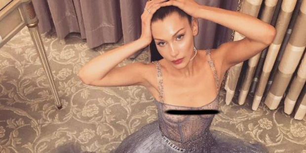 Bella Hadid went braless in this sheer Dior gown. Photo / Instagram