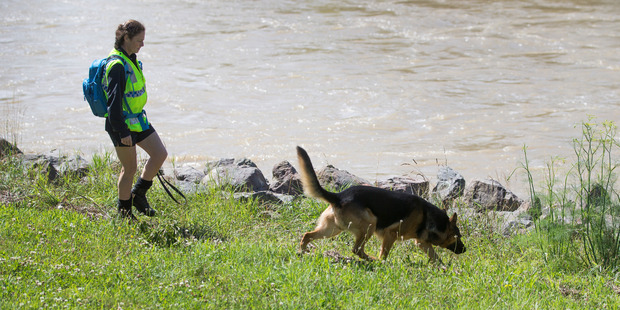 Loading A police officer and her dog search the bank of the swollen Hutt River at the Belmont Domain. Photo / Mark Mitchell