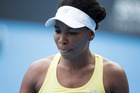Venus Williams. Photo / Nick Reed.