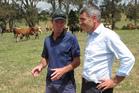 Okaihau dairy farmer Roger Hutchings explains the