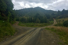 Fork in the road on the Motu Trail, Opotiki to Gisborne. Photo / Grant Bradley