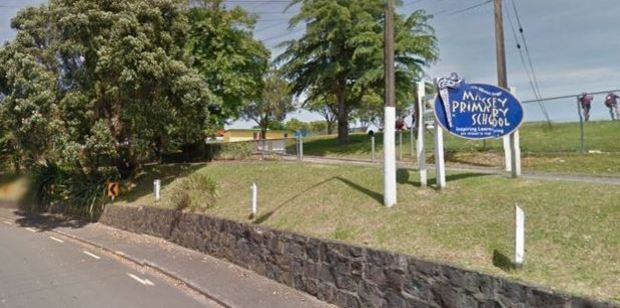 A child who died in tragic circumstances on Friday was a pupil at Massey Primary School. Photo / Google