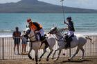 Beach polo took over Takapuna Beach yesterday. Photo/Brett Phibbs