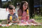 George, 2, and Violet Stevens, 4, taste test the new L&P-flavoured Fruju. Photo / Nick Reed