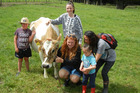 Dane Trebilco, 8, of Matapouri, left, gets close to friendly cow Chardonney, raised by Courtney McLean (crouching) for school calf club showdays, with Ella Beehre (behind) and 3-year-old Patariki Job, held by his mother Juanita. Photo / Mike Barrington