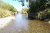 The Tamaki River which feeds into the Manawatu River has been tested by Horizons Regional Council staff and found not to contain anything linked to sewage discharge.