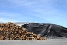 FUMIGATION: Tarpaulins and methyl bromide gas are used at Port of Tauranga to treat logs. PHOTO / JOHN BORREN
