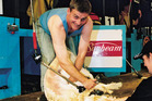 Prime Minister Bill English pictured back in 2002, showing off his shearing skills. The photo appeared in the National Party calendar. Photo / Supplied