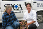 Gail Boyd of the Bay of Islands SPCA, left, and vet Joanna Van Pierce of the Bay of Islands with Tipa, who made a a steady recovery after being dragged behind a vehicle.