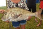 Suzanne Ludbrook of Kerikeri weighed in the heaviest snapper at the Far North ITM Doubtless Bay Fishing Contest and Auction 2017 over Anniversary Weekend at the end of last month. A bonus for the keen Kerikeri angler was that it was her first ever competition.