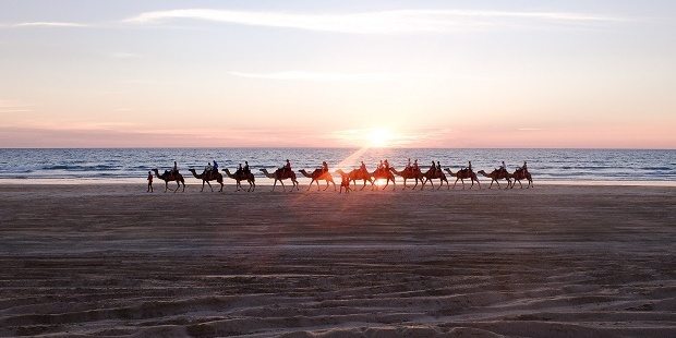 Sunset provides a spectacular backdrop to a camel train tour.