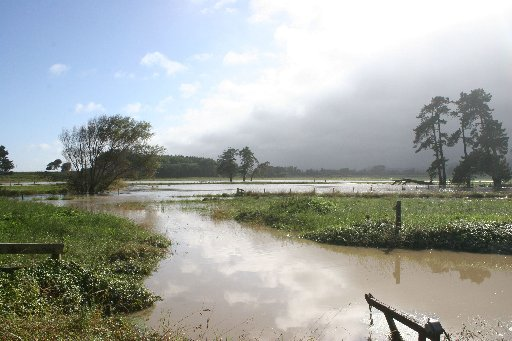 Flooding of Waikawa Beach Rd farms. Photo / Ashleigh Collis