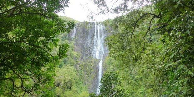 An American tourist has been found after getting lost on a walking track near the Wairere Falls.  Photo / File