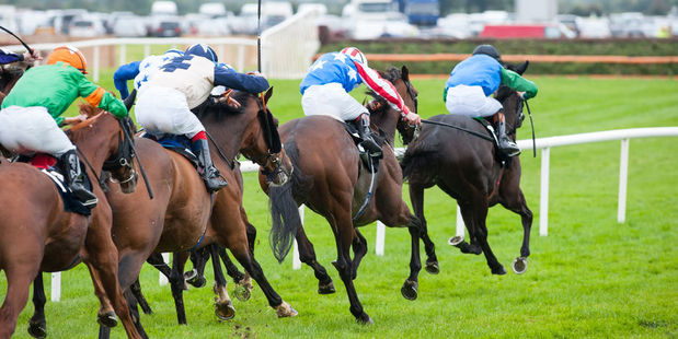 Hartnell beats the others by lengths and Winx leaves him five lengths in her wake. Photo / 123RF