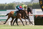Bonneval (red cap) gets the better of stablemate Nicoletta in the $100,000 Fillies Classic at Te Rapa. Photo / Trish Dunell