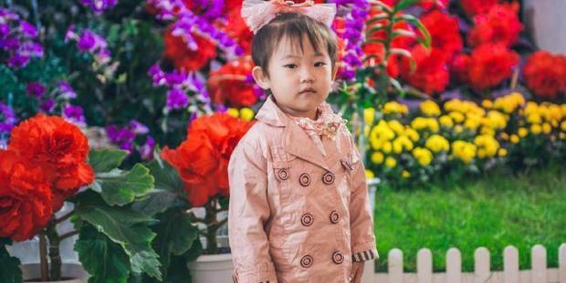 A child at the Kimilsungia/Kimjongilia exhibition. Photo / Reuben Teo